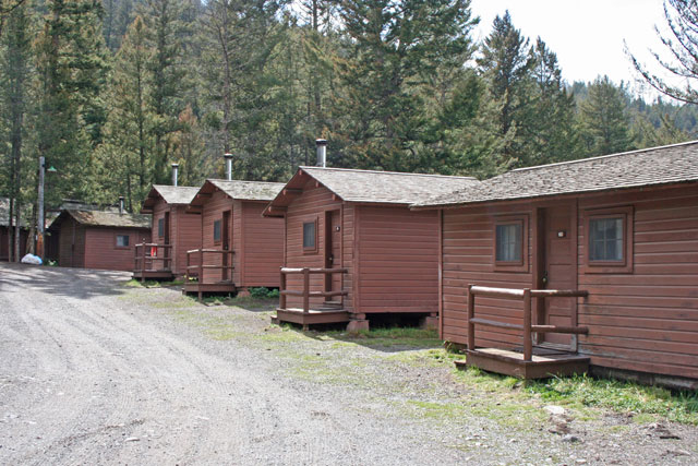 roosevelt lodge cabins yellowstone national park